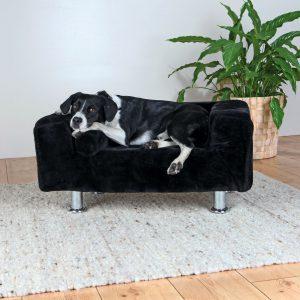 Hondenbank