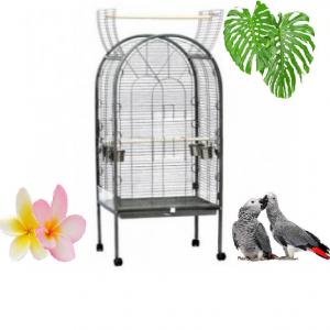 Papegaaienkooien